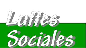 Luttes Sociales 01/2013
