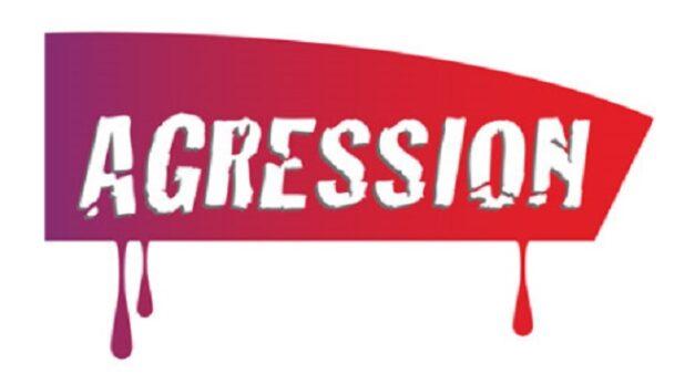 Agression : Tolérance 0 sur la ligne D