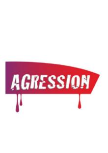Agression d'un agent de conduite à Laroche-Migennes