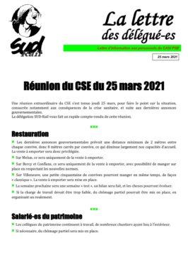 CASI PSE : CSE Extraordinaire du 25 mars 2020