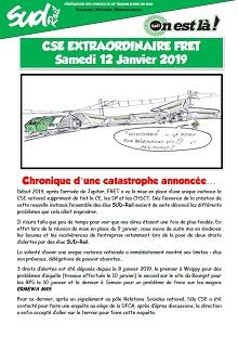 CSE Fret du 12-01-2019 : Chronique d'une catastrophe annoncée…