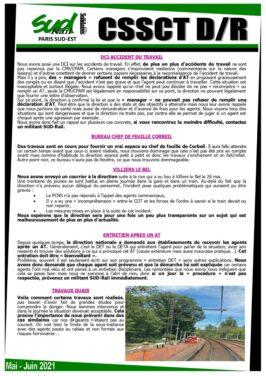 CSSCT CSE Liges D&R Juin 2021